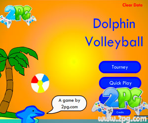Image Dolphin Volleyball
